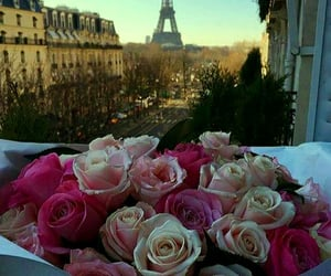 aesthetic, flowers, and romantic image