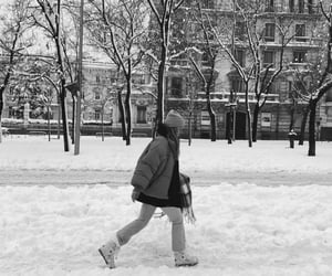 black and white, city, and cold image