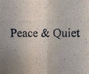 peace, quiet, and quotes image