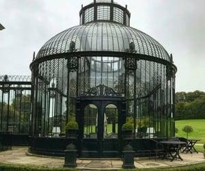 aesthetic, greenhouse, and ireland image