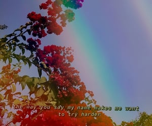 background, quote, and huji image