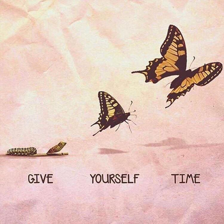 butterfly, article, and breakup image