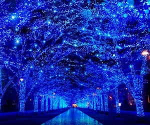 beautiful, blue, and christmas lights image