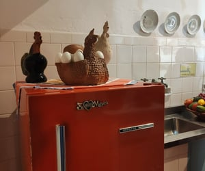 brasil, casa, and Chicken image