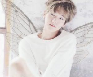 exo, fairy, and baek image