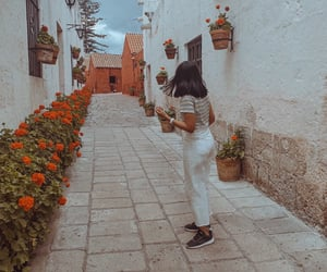flowers, travel photography, and ootd image
