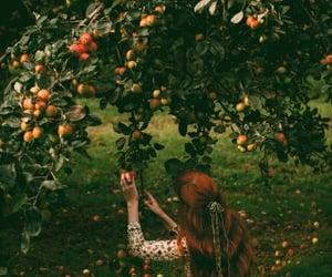 cottagecore, aesthetic, and nature image