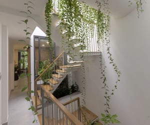 house, interior, and plants image