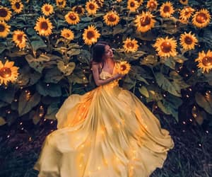 fairytale, summer, and sunflower image