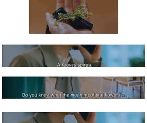 Korean Drama, quotes, and true beauty image