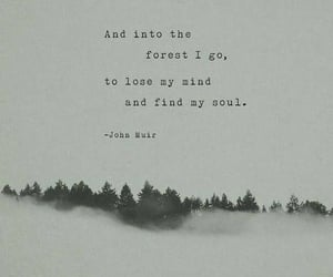 forest, mind, and nature image
