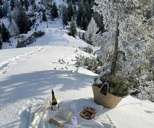 winter and christmas image