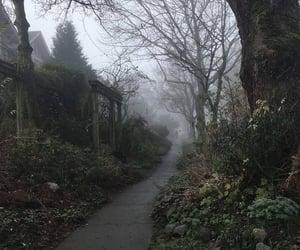 creepy and nature image