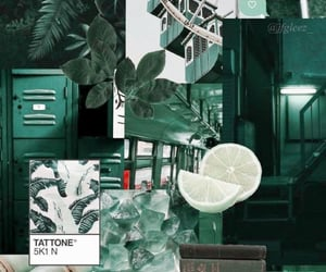 aesthetic, green, and wallpaper image