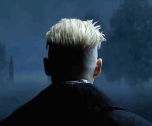 harry potter, comfort character, and fantastic beasts image