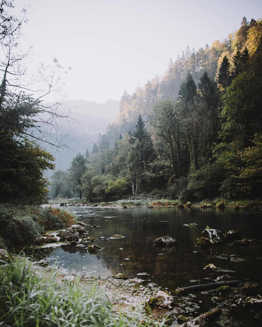 article, Lyrics, and photography image