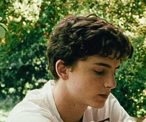 timothee chalamet, call me by your name, and elio perlman image