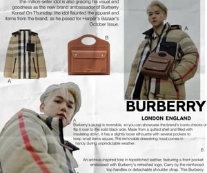 brown, Burberry, and catalog image