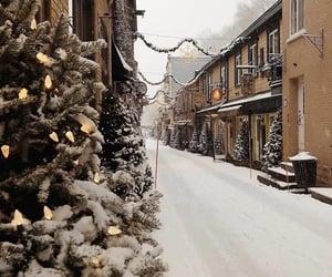 winter, christmas tree, and snow image