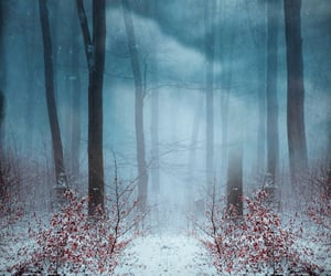 Winter ❄️ via tumblr ❄️ ❄️@_Naina
