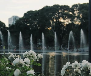 fountain, nature, and places image