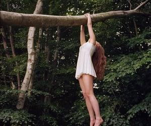 article, melancholic, and woods image