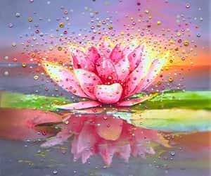 art, lotus, and pink image