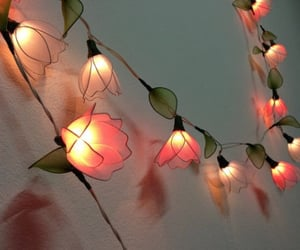 flowers, lights, and simply things image