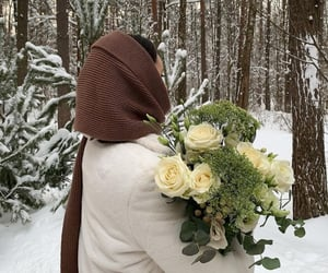 cold, followers, and forest image