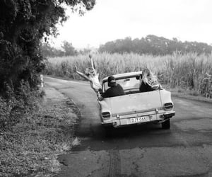 car, friendship, and photography image