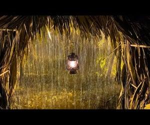 rain, video, and rain sounds for sleeping image