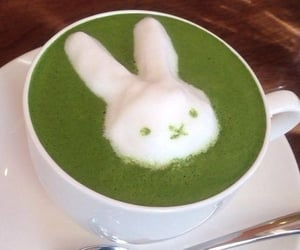 aesthetic, bunny, and green image