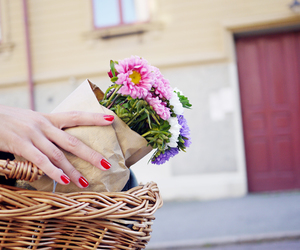 flowers, basket, and nails image