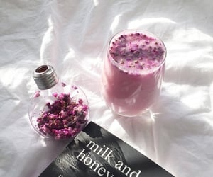 Milk and Honey @diversed | via tumblr
