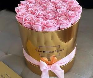 The Billion Roses