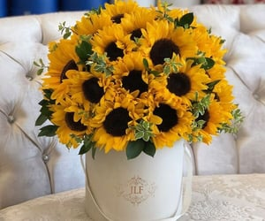 Jif Sunflowers J'Adore Les Fleurs | Pinterest