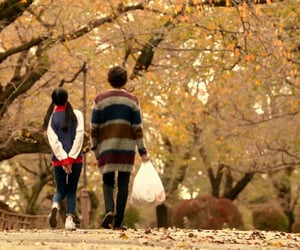 autumn, couple, and romance image