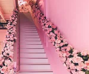 flowers, pink, and imagination image