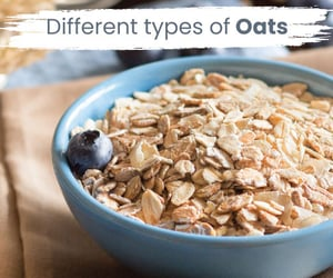 types of oats image