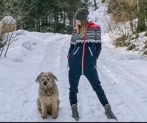 beauty, dogs, and couple image