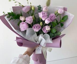 flowers, plants, and purple image