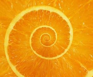 gif and orange image