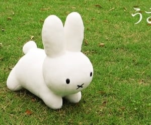 aesthetic, bunny, and cute image