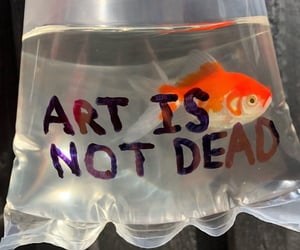 fish, aesthetic, and art image