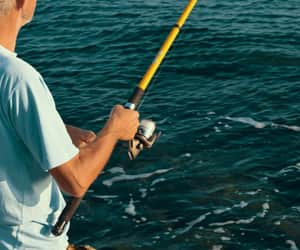 fishing and sport fishing image