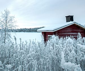 nature, snow, and house image