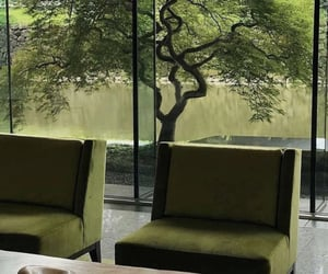 calm, chairs, and green image
