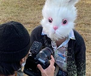 kpop, bunny head, and woodz image