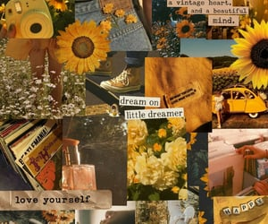 aesthetic, Collage, and flower image