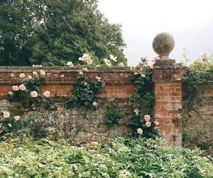 fairytale, fairytales, and flowers image